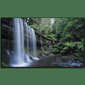 C785 - Russell Falls, Tasmania