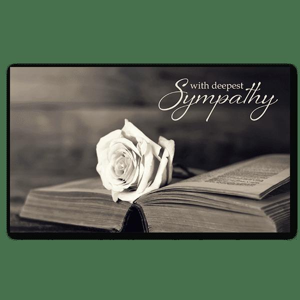 Rose on an Open Book